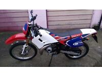 Rieju RR 50 CC Motorcycle for Sale