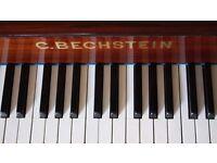 Shauna White Piano Tuition & Accompaniment