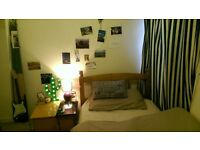 Affordable house share in Acton Vale area!