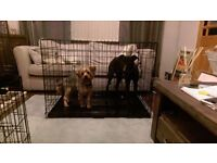 **Cheapest Premium Brand New Dog Cages (crate box kennel bed car cage travel pen run)