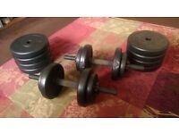 Strengths resistance Dumbbells weights - 22kg*