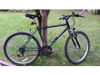 Raleigh Activator Mountain Bike