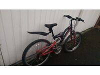 Childs bicycle. Off road mountain bike type