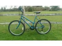 Mountain bike for sale. Raleigh BlueRidge. Woman's/men's/ladies/unisex.