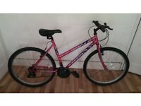 "Ladies 26"" bicycle JAZZ MAXIMA"