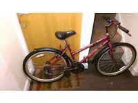 Raliegh mountain Ladies bike with 26 wheel size