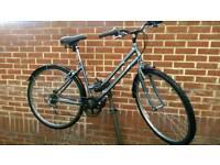 "Lady's Hybrid Bike Dutch Style Professional 28"" Wheels"