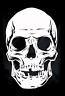 high detail airbrush stencil  skull 99 FREE UK POSTAGE