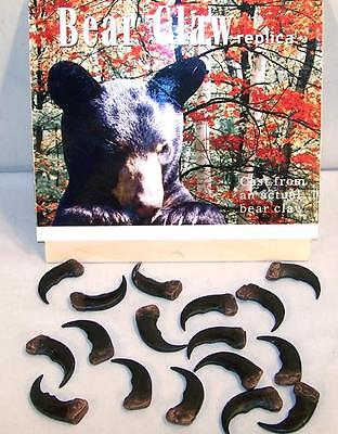 6 BULK SYTHENTIC GRIZZLY BEAR CLAW brown bears black animal claws LOT new items