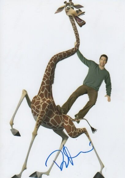 "David Schwimmer ""Madagascar/Friends"" Autogramm signed 20x30 cm Bild"