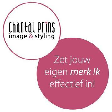 Chantal Prins - Power Presenteren - Noord & Midden Nederland