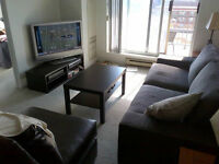 Updated 1 Bedroom Apartment (Holland Cross)
