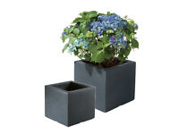 **** Wanted - stone effect planter sold in Lidl ****