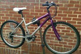 "Men's or Lady's Challenge Bike 26"" Wheels"