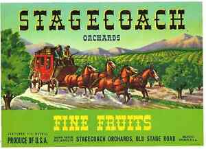 Vintage Orchard Label 1940's - Stagecoach Orchards,Oregon