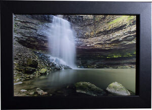 Awesome High Quality Prints! (Wildlife, city, nature, and more!) Cambridge Kitchener Area image 9