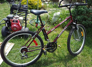 STOLEN: NORTHLAND MISTRAL MOUNTAIN BIKE