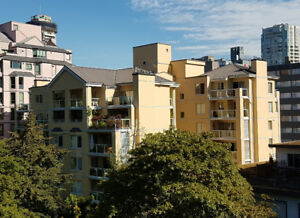 Gorgeous Stylishly Renovated Spacious 800 sq ft 2 Bedrooms Condo