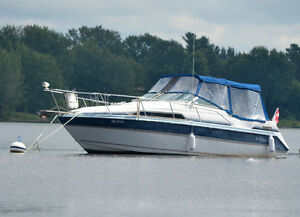 27 Foot, Twin Engine Cruiser For Sale