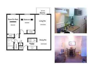 Room for Rent in Cute 2 Bedroom Apartment. Available...Now! Belleville Belleville Area image 6
