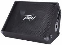 Peavey PV 12M 12 Inch Monitor and mixer for sale.