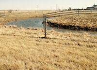 8 acre pasture c/w waterer and windbreak.
