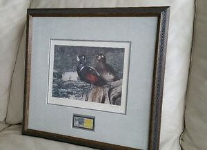 Harlequin Ducks - 1997 Limited Edition Ducks Unlimited print