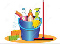 Hardworking Cleaner Available