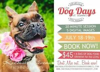 Dog Days of Summer Photography Sessions