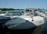2009 Stingray 240CS, Volvo 5.0 GXi Duoprop, 270hp, Only 58 Hrs!