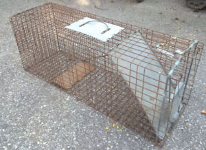 Have-a-Heart Humane Live Trap for Raccoons etc.