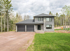 ** IMMACULATE 2 STOREY HOME WITH WALK OUT BASEMENT**