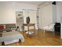 Live- work space - large studio / 1 bed flat to rent in Dalston E8, high ceiling, spacious and airy