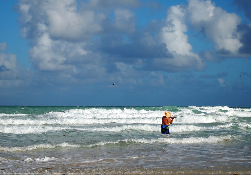 Best surf fishing rigs ebay for Best surf fishing rigs