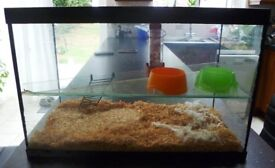 HAMSTER/GERBIL GLASS CAGE PLUS ACCESSORIES