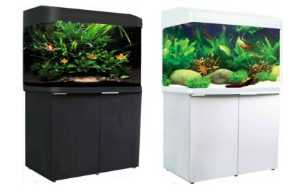 Aqua One 980T White 240L Aquarium Package SAVE $$$ BRAND NEW
