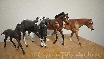 Collection dispersal!  Lot of 4 CC Shuffle Paint me a Pepto Zenyatta's colt NR!
