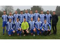 St Albans Sunday league football team – Players wanted