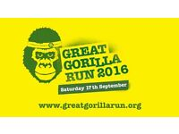 Great Gorilla Run 2016 Volunteer