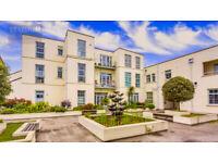 Stylish 1 bed, 1 bath Apartment on Urswick Road - Hackney Central, E9
