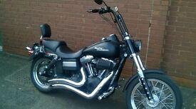 custom bobber style Harley Davidson streetbob cool