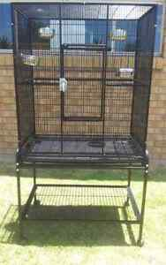 Large Bird Cage Upper Coomera Gold Coast North Preview