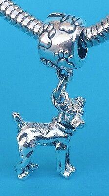 Adorable Rat Terrier 3D Dangle Charm on Pawprint Bail
