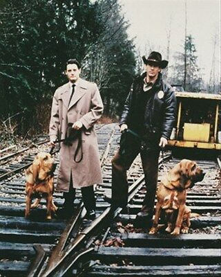 """TWIN PEAKS TELEVISION PHOTO Poster Print 24x20"""" cool photo 24878"""