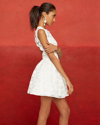 Alexis  Vendela  White Lace Cut Out Dress W Tulle Petticoat S Small