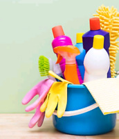 Cleaning Lady Available in Hanmer/Capreol