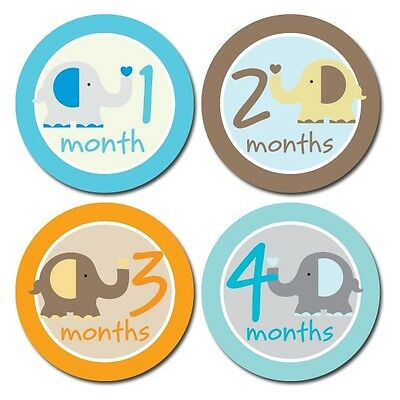 Elephant Onesie Stickers for Baby, Milestone Stickers, Boy or Girl month Sticker