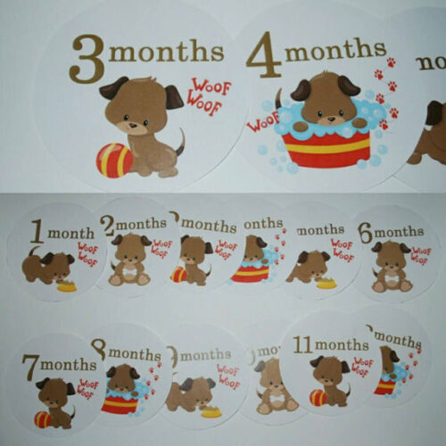 Puppy Monthly baby stickers. Bodysuit month stickers.
