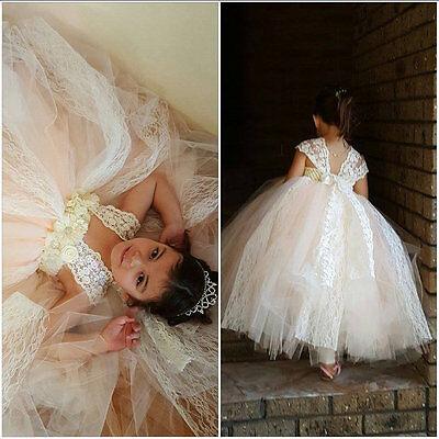 Elfenbein Champagner Spitze Mädchen Kleid Tüll Strass Blume Perlen Gr 116-152 ()