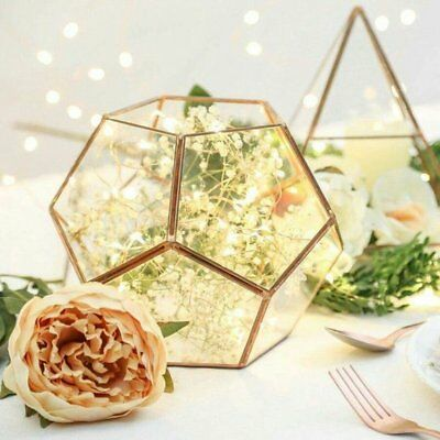 Glass Geometric Terrarium/ Wedding Table Decor/ Succulent Planter/Air Plants